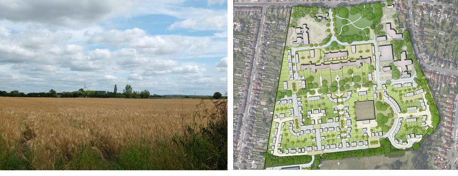 Open field landscape & landscape planning chart