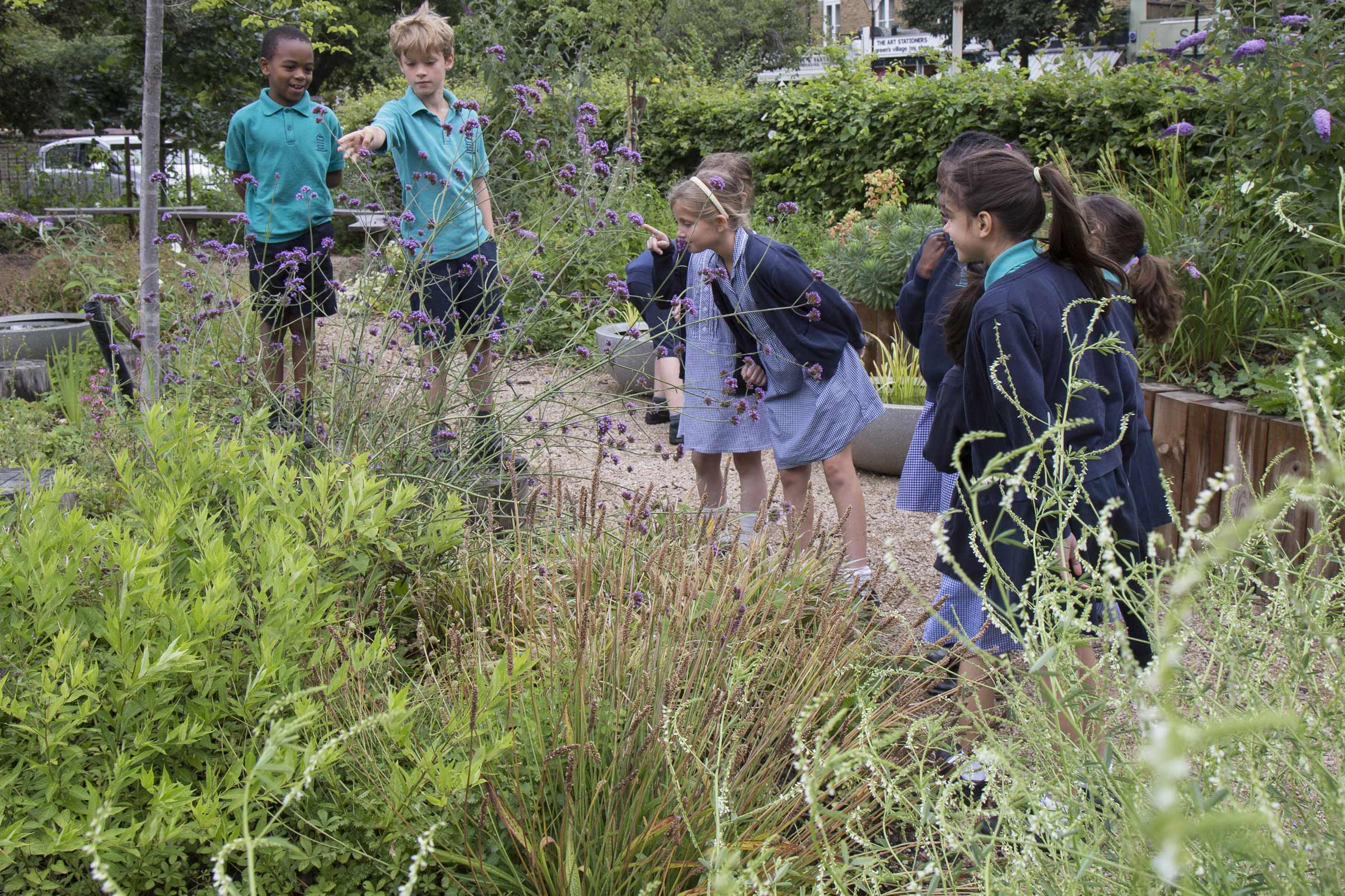Outdoor learning wildlife garden biodiversity